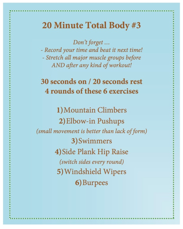 20 minute total body 3